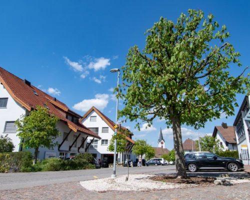 Dorfzentrum, Einkaufsmöglichkeiten Post / Bank erhalten